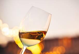 Spesialtilbud til abonnenter av Apéritifs Mat & Vinklubb: Denne kvelden får du smake 9 elegante viner fra en av Rheingaus beste vinmakere