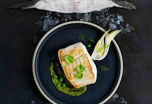 Pannestekt kveite med braisert fennikel, grønne bønner- og erte-sauté, chimichurri