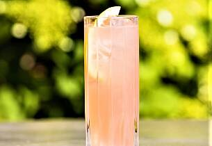 Taylor's Grapefrukt drinkoppskrift