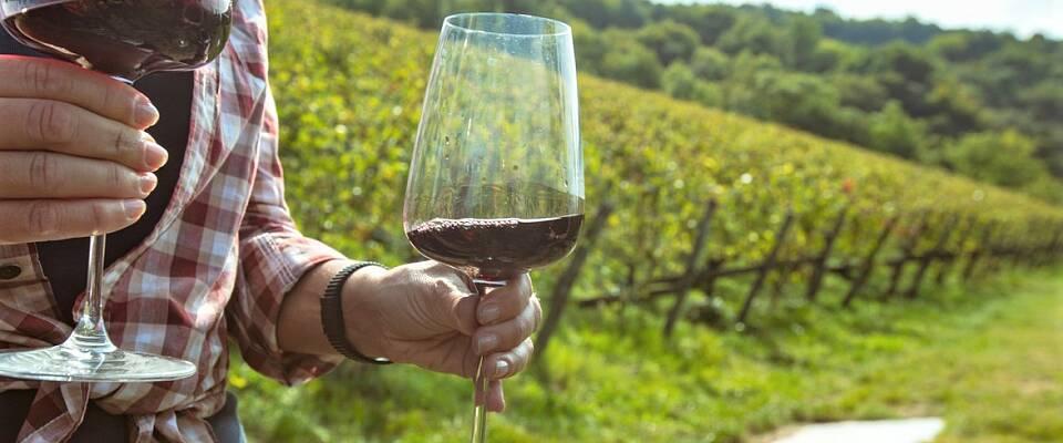 En fantastisk mulighet til å smake disse fornemme dråpene fra Toscana